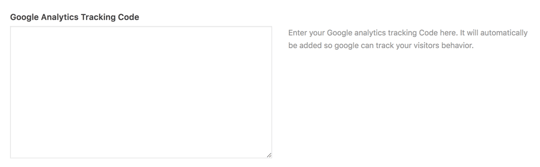 Google Analytics tracking code spot in theme