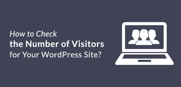 check-number-of-visitors-for-your-wp-site